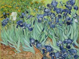 7. Iris.---Vincent van Gogh