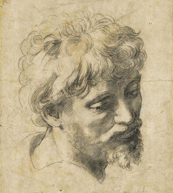 La Testa di giovane apostolo di Raffaello (1519)