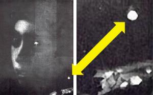 Circa 50 anni fa Gowing osservando una fotografia a raggi-x (a destra) del quadro sostenne che probabilmente costituiva una prova dell'utilizzo della camera oscura.