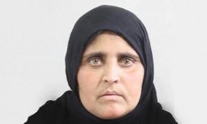 Sharbat-Gul.40-anni